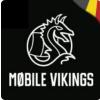 VikingCo